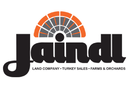 Jaindl web marketing