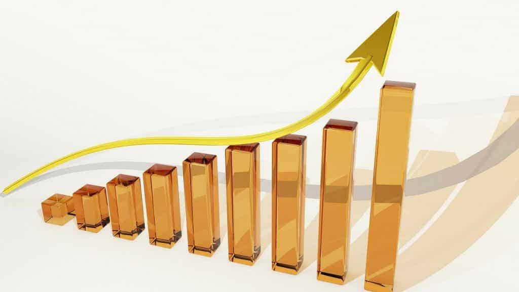 SEO grows profits